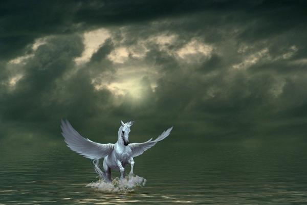 페가수스는 날개 달린 백마이며, 하늘을 달리는 그 모습을 보고 그리스인들이 신마(神馬)로 숭배했을 정도로 웅대하다. 페가수스는 태어나자마자 곧바로 제우스신의 번개를 옮기는 역할을 맡아서 하늘을 달리게 되었다.(이미지=픽사베이, 설명=네이버 지식백과)