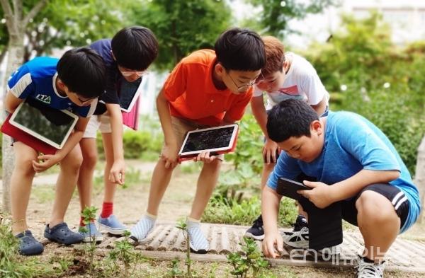 학교주변의 문제를 탐색하여, 테블릿으로 자료를 조사하고 위두랑을 통해 공유할 수 있다.(사진=구은복 교사)